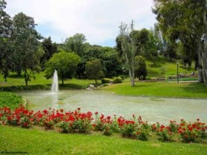 live-barcelona-montjuic-jardines_0